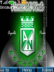Atletico Nacional theme screenshot