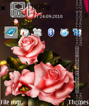 Pinkroses es el tema de pantalla