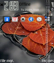 Leaves 01 theme screenshot