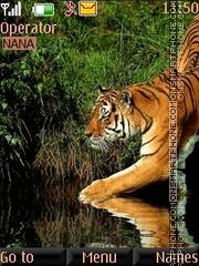 Tiger In Water theme screenshot