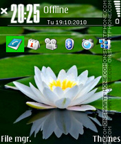 Waterlily theme screenshot