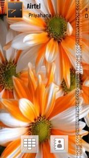 Cute Flowers 02 Theme-Screenshot