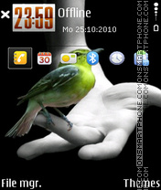 Bird 02 theme screenshot
