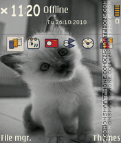My kitten theme screenshot