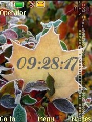 Autumn hoarfrost tema screenshot