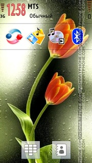 Flower 11 theme screenshot