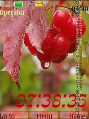 Autumn berries theme screenshot