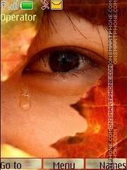 Autumn tears theme screenshot