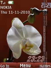 Orchids clock es el tema de pantalla
