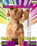 Dog music theme screenshot