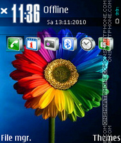 Colorful Flower 01 theme screenshot