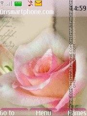 Beautiful rose es el tema de pantalla