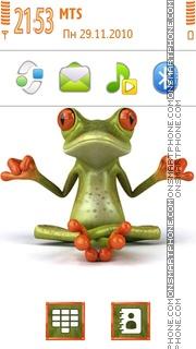 Funny Frog 03 theme screenshot