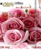 Pink Roses 02 es el tema de pantalla