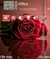 Red Rose 04 theme screenshot