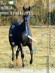 Horses tema screenshot