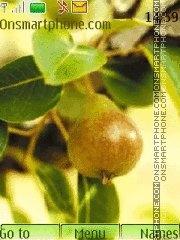 Скриншот темы Pears