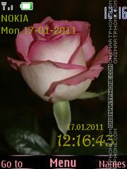Скриншот темы Pink rose