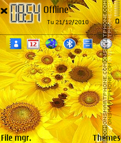 Sunflowers 01 theme screenshot