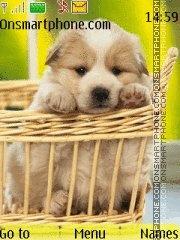 Cute Puppy 02 theme screenshot