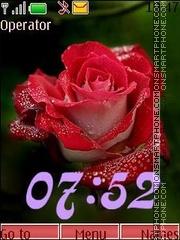 Roses swf24 theme screenshot