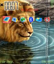 Lion Like Me theme screenshot