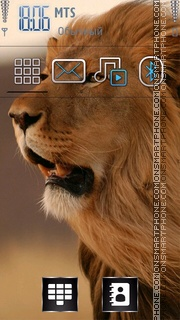 Lion 25 theme screenshot