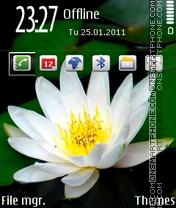 White Lotus 01 es el tema de pantalla