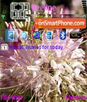 N73 Style 01 theme screenshot