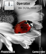 Camomile and Ladybug theme screenshot