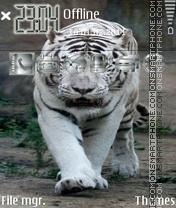 Скриншот темы White Tiger 10