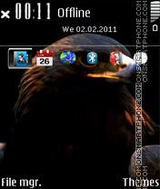 Eagle 11 theme screenshot