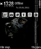 Black labrador 01 theme screenshot