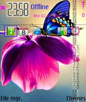 Purple Flower 03 es el tema de pantalla