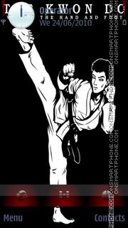 Taekwondo theme screenshot