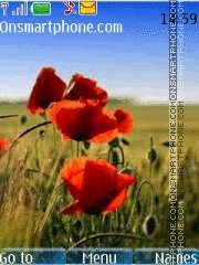 Ukrainian Summer theme screenshot