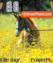 The Horse es el tema de pantalla