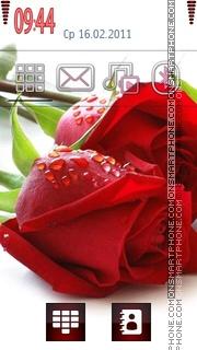 Roses 03 theme screenshot