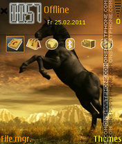 Horse 07 theme screenshot