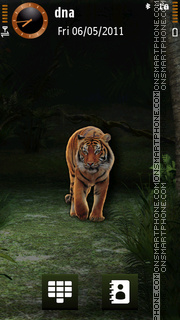 Tiger v5 theme screenshot