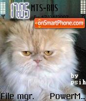 Cat 2 es el tema de pantalla
