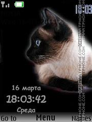 Siam Cats2 theme screenshot