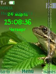 Frog SWF theme screenshot