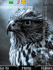 Eagle 12 theme screenshot