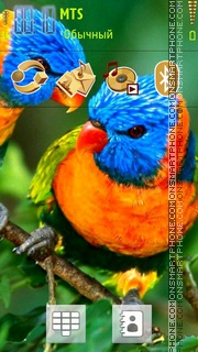 Parrot 05 theme screenshot