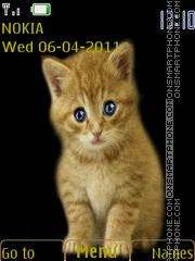 Ginger Kitten 02 theme screenshot