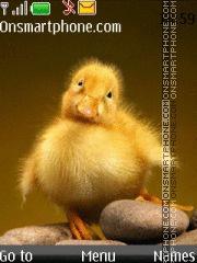 Cute Puppy Duck es el tema de pantalla