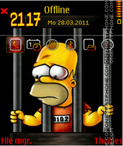 Homer 07 theme screenshot