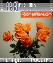 Flowers 01 es el tema de pantalla