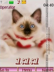 Kittens 12 pict swf tema screenshot